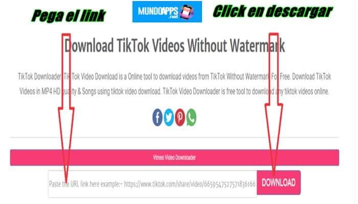 So laden Sie Videos von Tiktok . herunter