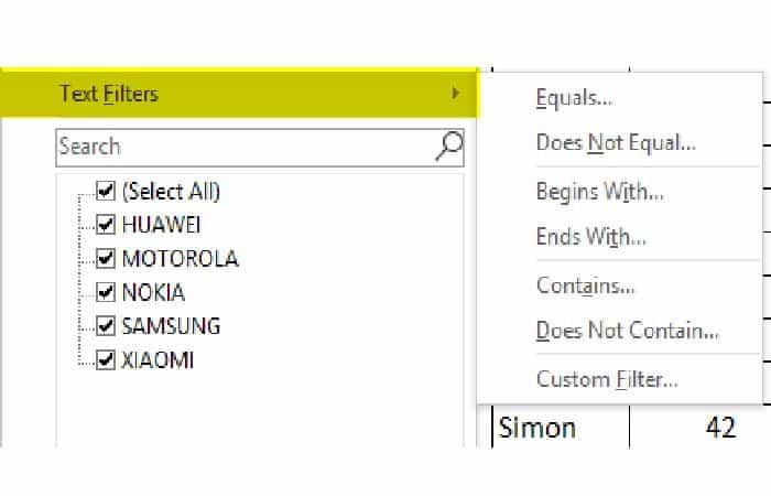 So fügen Sie Filter in Excel 21 ein