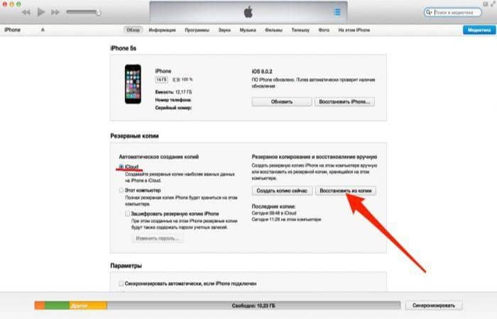 So löschen Sie den Cache auf dem iPhone