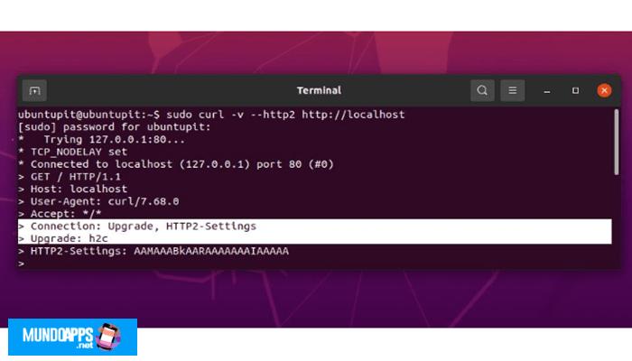 Nginx-Server-Setup unter Red Hat und Fedora Linux