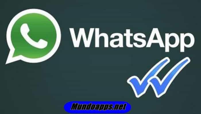 So löschen Sie eine WhatsApp-Nachricht.  TUTORIAL 2021