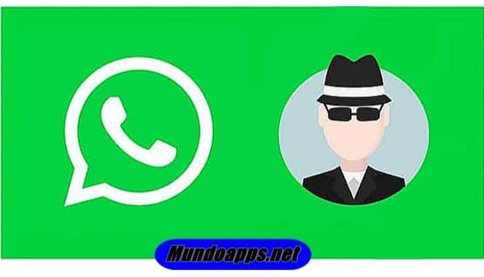 So entfernen Sie Online von WhatsApp.  TUTORIAL 2021