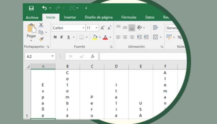 So schreiben Sie vertikal in Excel.  Tutorial 2021