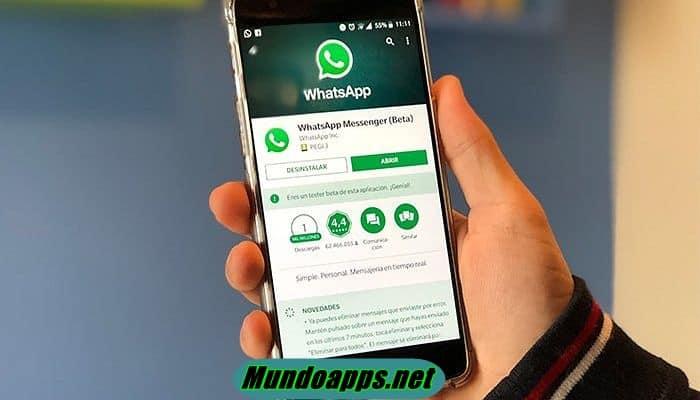 Laden Sie Bilder und Videos des WhatsApp-Status herunter