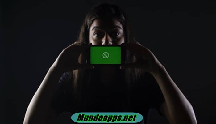 Wissen, wer Ihre Gruppennachricht auf WhatsApp gelesen hat
